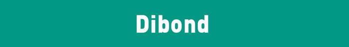 Arrow Print Dibond title